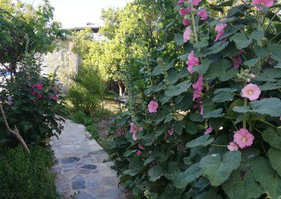 Kaizer Cyprus Agrotourism - IMG 20190526 080437