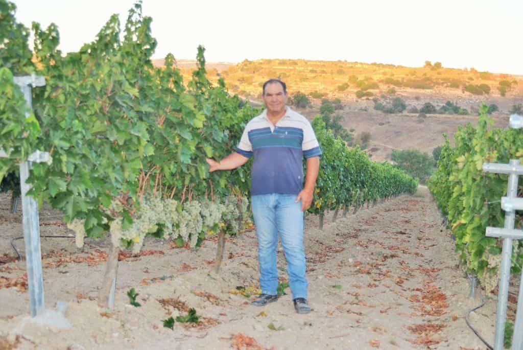 Kaizer Cyprus Agrotourism - 21544053 1431821173521975 41931753673925686 o