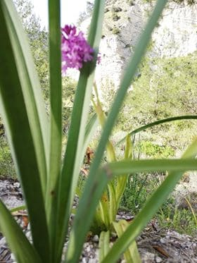 Kaizer Cyprus Agrotourism - 57486004 280475042838979 2080374423222747136 n