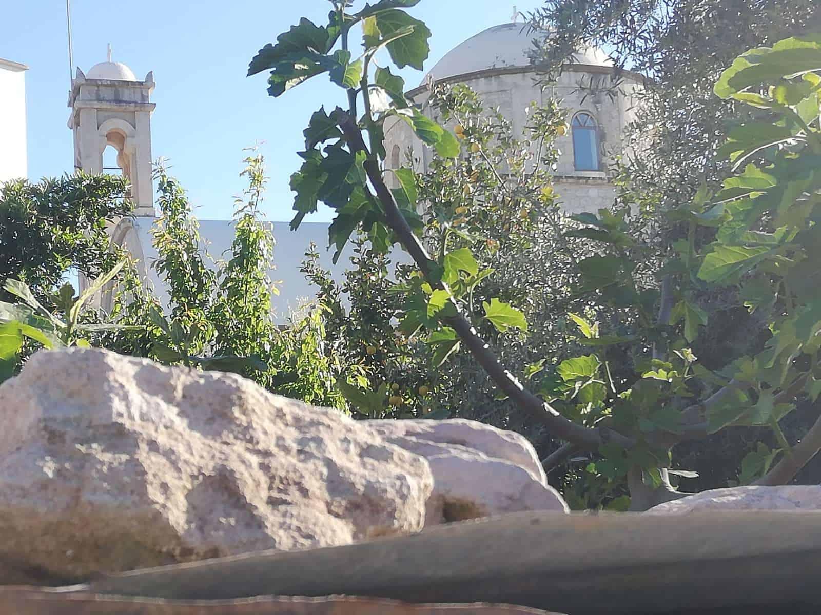 Kaizer Cyprus Agrotourism - zoo