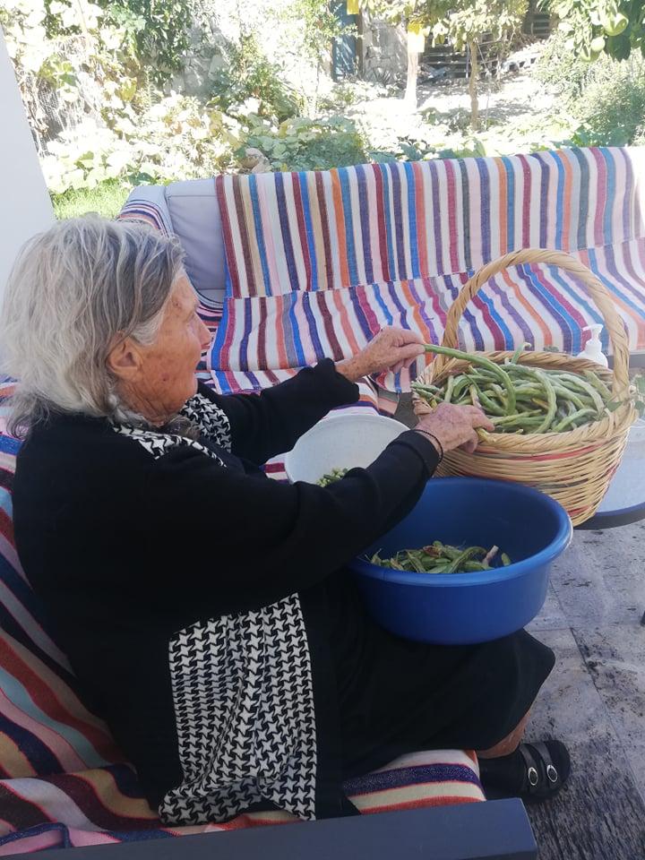 Kaizer Cyprus Agrotourism - 244682117 578706336703050 1083786112042804037 n 1